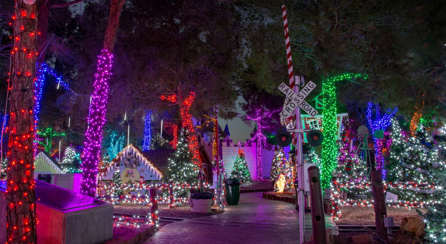 A garden and trees adorned in colorful Christmas lights.