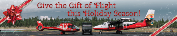 Purchase Helicopter Tour Gift Certificates
