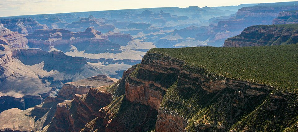A section of the Grand Canyon South, blanketed by the Kaibab National Forest.