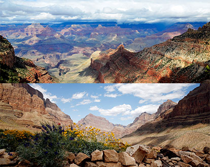 Grand Canyon Rim Comparison