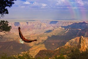 Book tours from Grand Canyon National Park