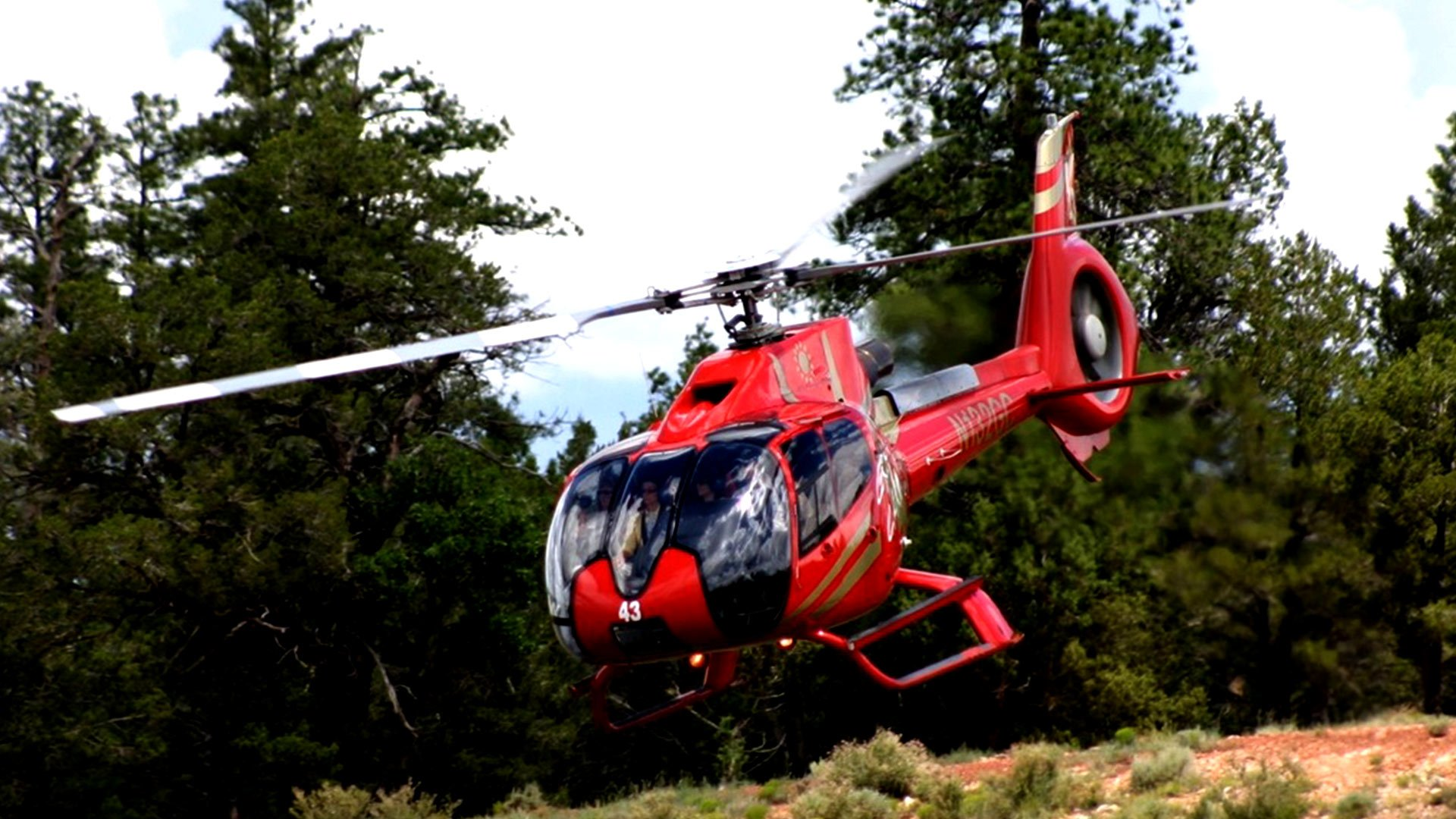 A red helicopter lands at the Grand Canyon with a forest in the background.