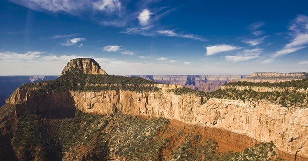 A Grand Canyon wall amidst a bright sunny sky.