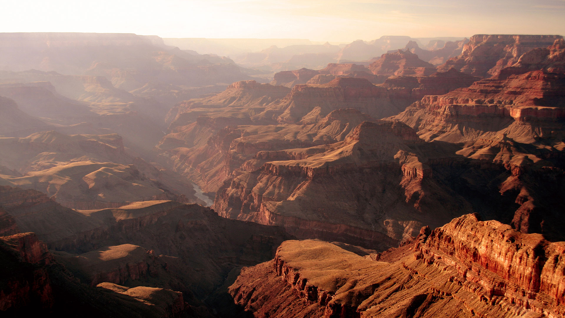 A scenic Grand Canyon vista lit by warm sunlight.